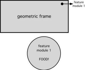 Geometry, features, and orientation in vertebrate animals: A